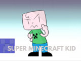 Super Minecraft Kid