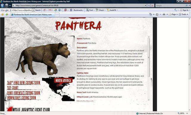 File:North American lion.jpg
