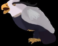 Heron-Eagle