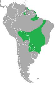 Toco Toucan distribution