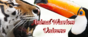 Animal Warriors Universe