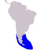 Peales Dolphin range