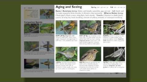 The Warbler Guide -- Aging and Sexing Warblers
