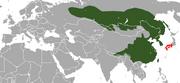Siberian Weasel range