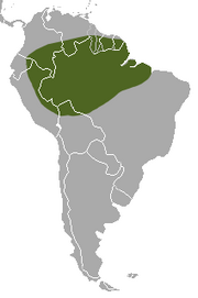 Amazon Weasel range