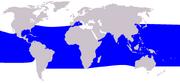 Pygmy Killer Whale range
