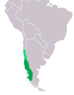 Chilean Cat range