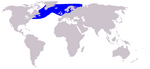 White-beaked Dolphin range