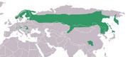 Euarsian Three-toed Woodpecker distribution