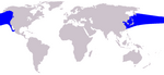 Pacific White sided Dolphin range