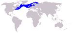 Atlantic White sided Dolphin range