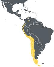 Andeancondorrange