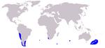Dusky Dolphin range