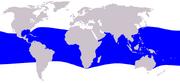 Melon-headed whale range