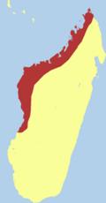 Madagascar Fish Eagle range