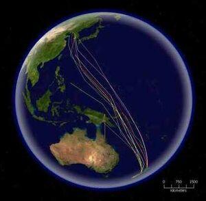 Bar-tailed Godwit migration