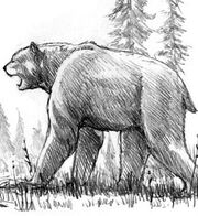 List Of Cryptozoological Bears