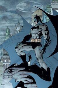 Bruce Wayne (DC Universe) 001