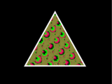 The Great Triangle