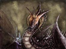 1289718435 the black dragon lord by silinde ar feiniel-d2z55uz