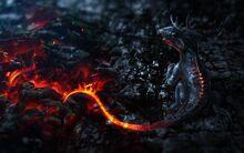 2560x1600 ogon-drakon-art-dragon