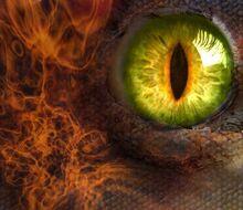1291000754 dragon eye by angeloffallingstars
