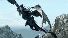 Dragonborn 07 big