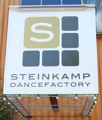 Steinkamp Dance Factory Logo