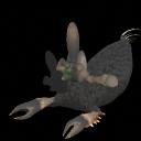 Rhontops Female (Fertile)