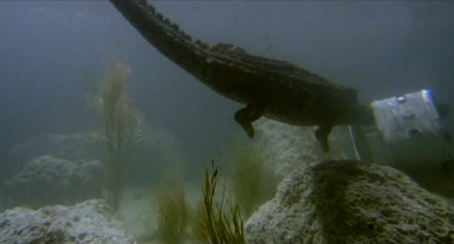 File:The Great Alligator 4.png
