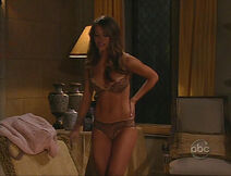 A Photo Of Amanda (Chrishell Stause) In Her Brown Lace Bra And Her Brown Lace Underwear, In An Episode Of ''All My Children'' From November 10, 2008