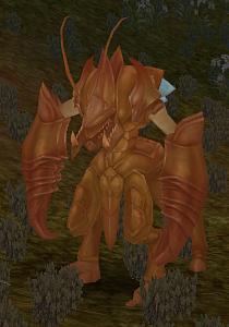 Mantis Champion