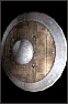 Wooden-shield