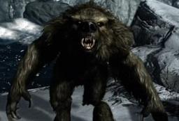 Werebear (TES)