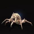 Albino Cave Crawler