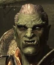 Image Orc