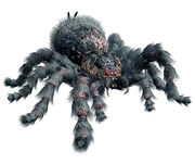 Giant Spider (RE0)