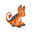 Bori (Neopets) Orange