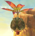 Peahat (Skyward Sword)