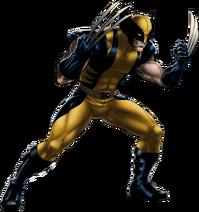 Wolverine Portrait Art
