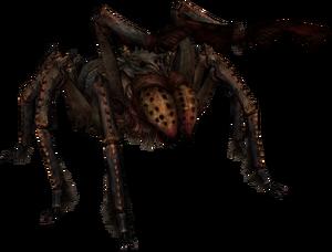 Frostbite Spider
