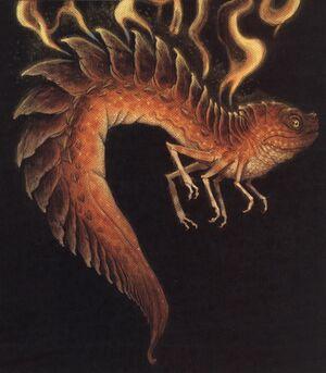 Fire Salamander (Spiderwick)