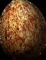 Pine Thrush Egg