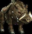 Bullbo