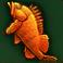 Frenzy Fish (T2)