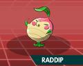 Raddip