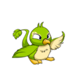 Pteri (Neopets) Green