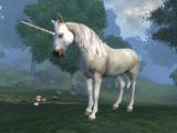 Unicorn (Elder Scrolls)