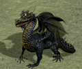 Black Dragon (Heroes IV)