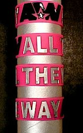 File:All The Way Wristband.JPG